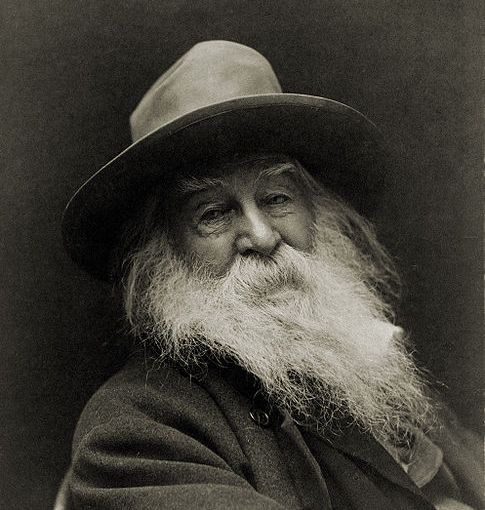 """A Noiseless Patient Spider"" by Walt Whitman"